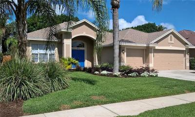Tarpon Springs Single Family Home For Sale: 510 Equine Drive