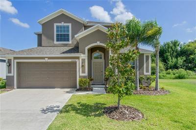 Wimauma Single Family Home For Sale: 10924 Rainbow Pyrite Drive