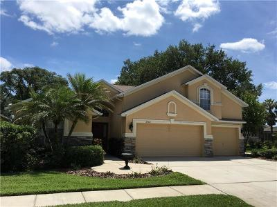 Valrico Single Family Home For Sale: 2964 Hickory Grove Drive