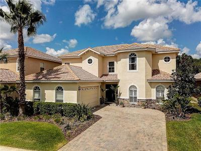 Tampa Single Family Home For Sale: 18050 Cozumel Isle Drive