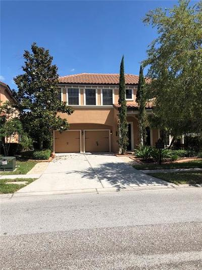 Tampa Single Family Home For Sale: 20327 Chestnut Grove Drive