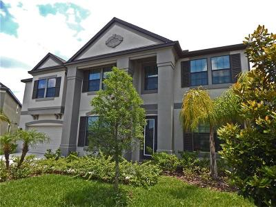 Riverview Rental For Rent: 11525 Sand Stone Rock Drive