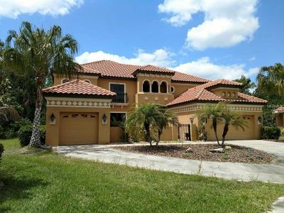Tampa Single Family Home For Sale: 20001 Pergola Bend Lane