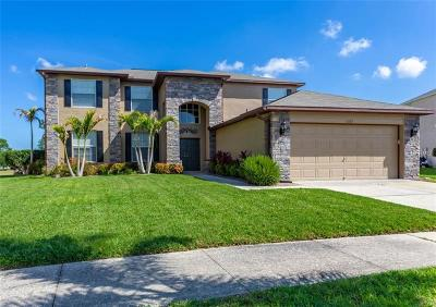 Hernando County, Hillsborough County, Pasco County, Pinellas County Single Family Home For Sale: 11112 Sailbrooke Drive