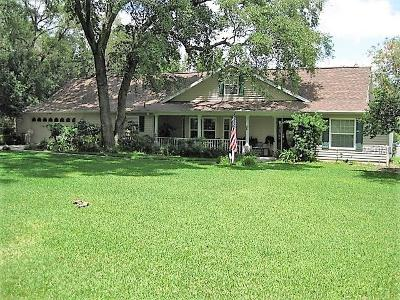 Hillsborough County Single Family Home For Sale: 228 Craft Road