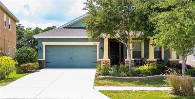 Zephyrhills Single Family Home For Sale: 6247 Hawk Grove Court