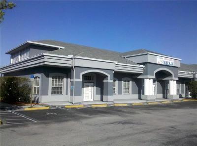 Palm Harbor Commercial For Sale: 2815 Alt 19