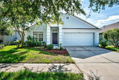 Tampa Single Family Home For Sale: 8523 Canterbury Lake Boulevard