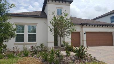 Tarpon Springs Single Family Home For Sale: 1411 Keystone Ridge Circle
