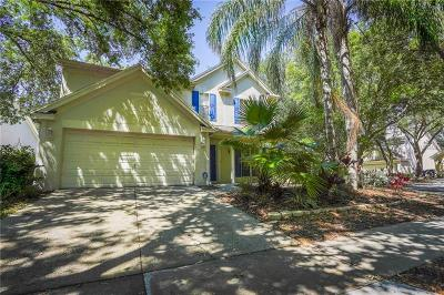 Tampa Single Family Home For Sale: 9424 Willow Cove Court