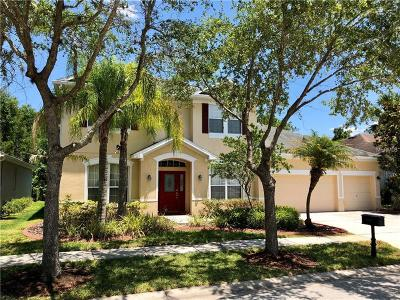 Tampa Single Family Home For Sale: 16159 Colchester Palms Drive