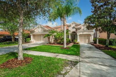 Tampa Single Family Home For Sale: 11627 Bristol Chase Drive