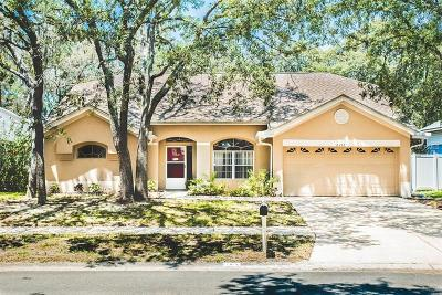 Valrico Single Family Home For Sale: 2212 Kenwick Drive