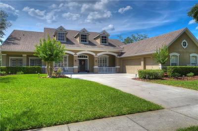 Lithia Single Family Home For Sale: 6115 Kestrelridge Drive
