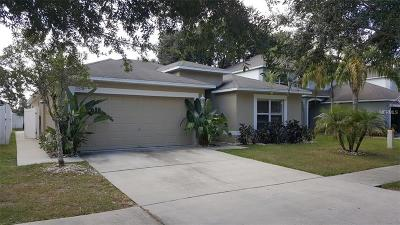 Riverview Single Family Home For Sale: 13531 Copper Head Drive