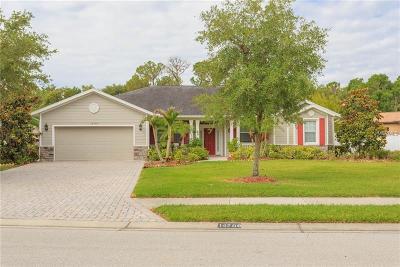 Bradenton Single Family Home For Sale: 14708 17th Avenue E