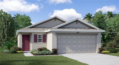 Wimauma Single Family Home For Sale: 5045 Brickwood Rise Drive