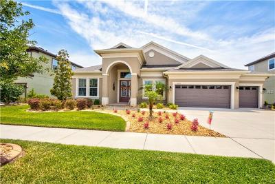 Wesley Chapel Single Family Home For Sale: 32697 Natural Bridge Road