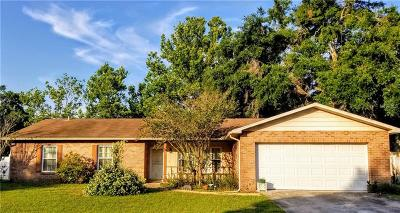 Valrico Single Family Home For Sale: 3815 Rolling Circle