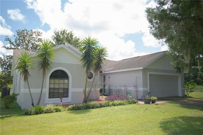 Plant City Single Family Home For Sale: 3902 Cork Road