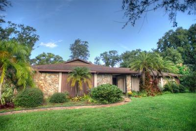 Tampa Single Family Home For Sale: 2013 Chickwood Court