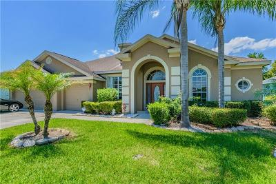 Pasco County Single Family Home For Sale: 3839 Eagleflight Lane