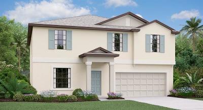 Zephyrhills Single Family Home For Sale: 3205 Kresterbrooke Lane