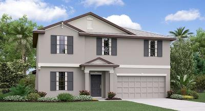 Zephyrhills Single Family Home For Sale: 3027 Moulden Hollow Drive
