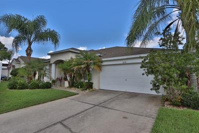 Wesley Chapel Single Family Home For Sale: 5235 Strike The Gold Lane