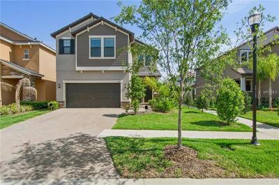 Brandon Single Family Home For Sale: 943 Terra Vista Street