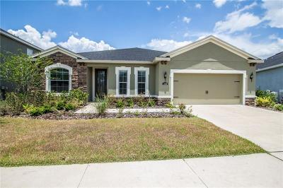 Riverveiw, Riverview, Riverview/tampa Single Family Home For Sale: 11038 Spring Point Circle