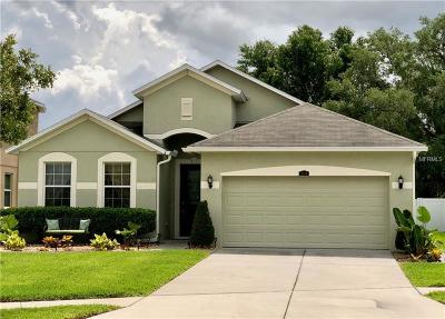 Wesley Chapel Single Family Home For Sale: 3744 Grecko Drive