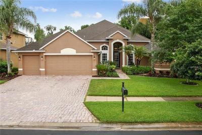 Wesley Chapel Single Family Home For Sale: 2608 Brookforest Drive
