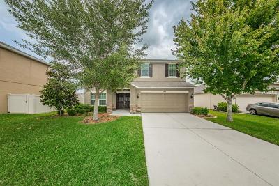 Land O Lakes Single Family Home For Sale: 9614 Regiment Court