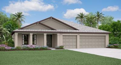 Ruskin Single Family Home For Sale: 9733 Sage Creek Drive
