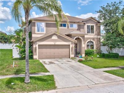 Riverview Single Family Home For Sale: 11013 Sailbrooke Drive