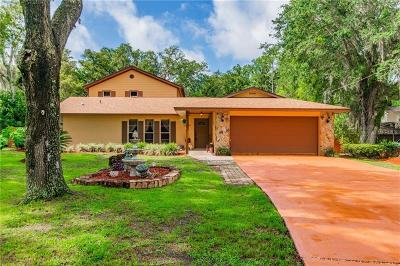 Wesley Chapel Single Family Home For Sale: 28800 Walker Drive