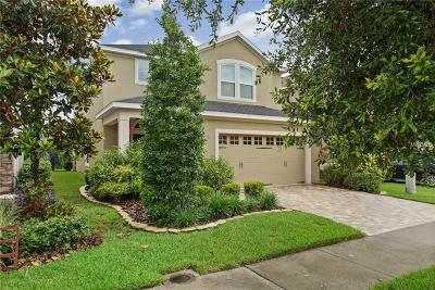 Lithia Single Family Home For Sale: 16313 Bayberry View Drive