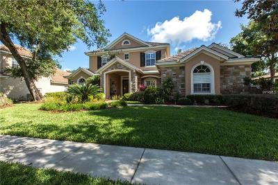 Lithia Single Family Home For Sale: 15510 Avocetview Court