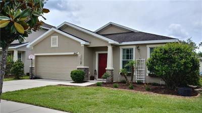 Riverview Single Family Home For Sale: 8407 Tidal Breeze Drive