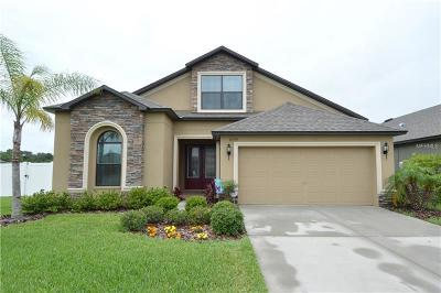 Wesley Chapel Single Family Home For Sale: 6539 Boulder Run Loop