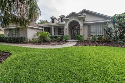 Lithia Single Family Home For Sale: 6128 Kestrelridge Drive