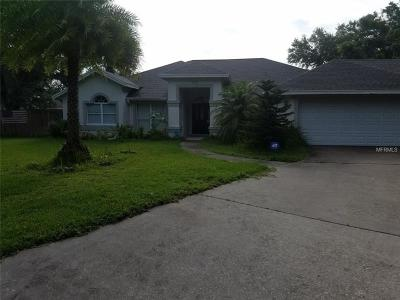 Valrico Single Family Home For Sale: 4004 Woods Pointe Way