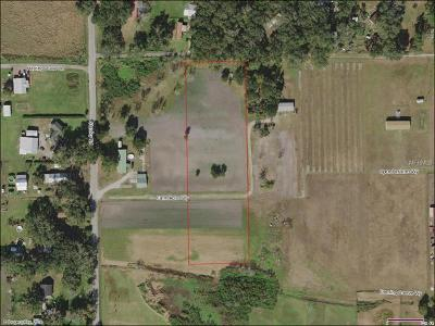 Plant City Residential Lots & Land For Sale: 6108 Farm Acres Way