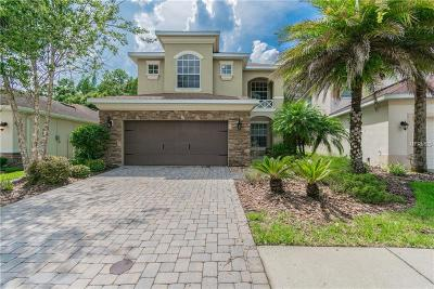Tampa Single Family Home For Sale: 16068 Bella Woods Drive