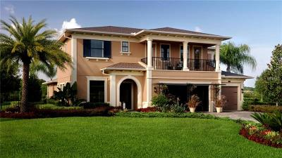 Lutz FL Single Family Home For Sale: $935,000