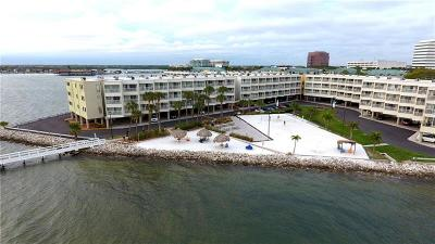 Tampa Condo For Sale: 2506 N Rocky Point Drive #311
