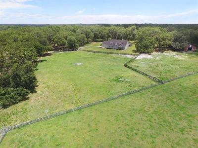 Single Family Home For Sale: 28416 Bayhead Road