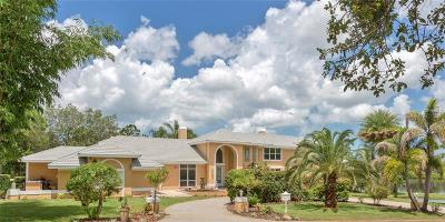 Tarpon Springs Single Family Home For Sale: 1520 Jade Lane