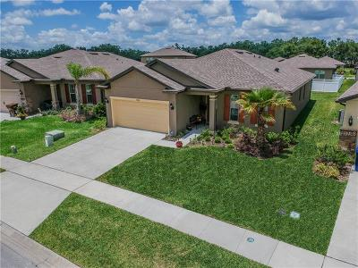 Lake County, Orange County, Osceola County, Polk County, Seminole County Single Family Home For Sale: 8765 Hinsdale Heights Drive